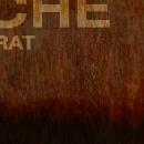 coque-arche-texte